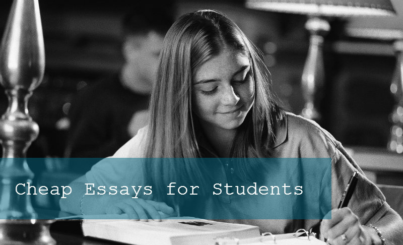 cheap essays for students com where cheap essays for students essayhave com